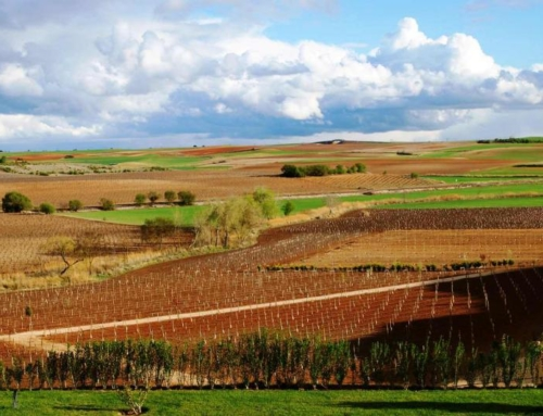 WineBytes in Spain, Day One