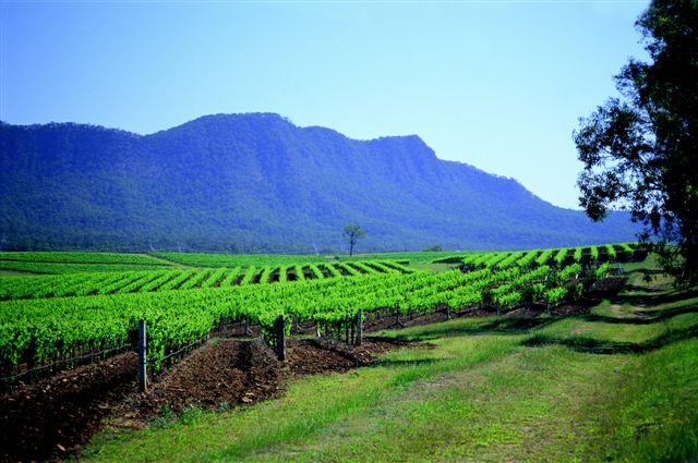 Hunter Valley Australia  City new picture : Wine Maps: Australia — Hunter Valley