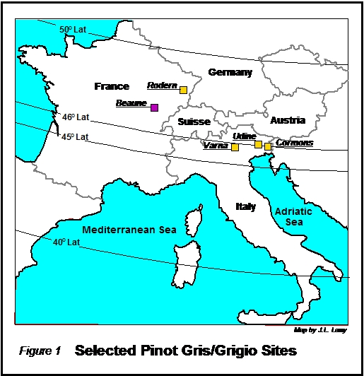 Selected Pinot Gris-Grigio Sites