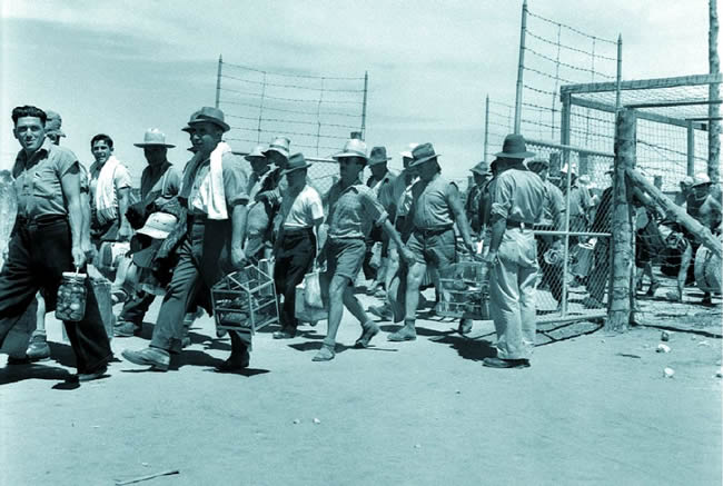 Italian internees in South Australia