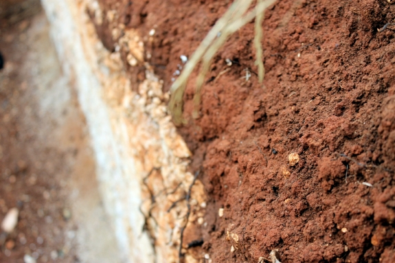Australian food and wine; Terra Tossa Coonawarra soil