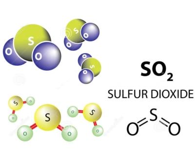 Wine & Sulfites