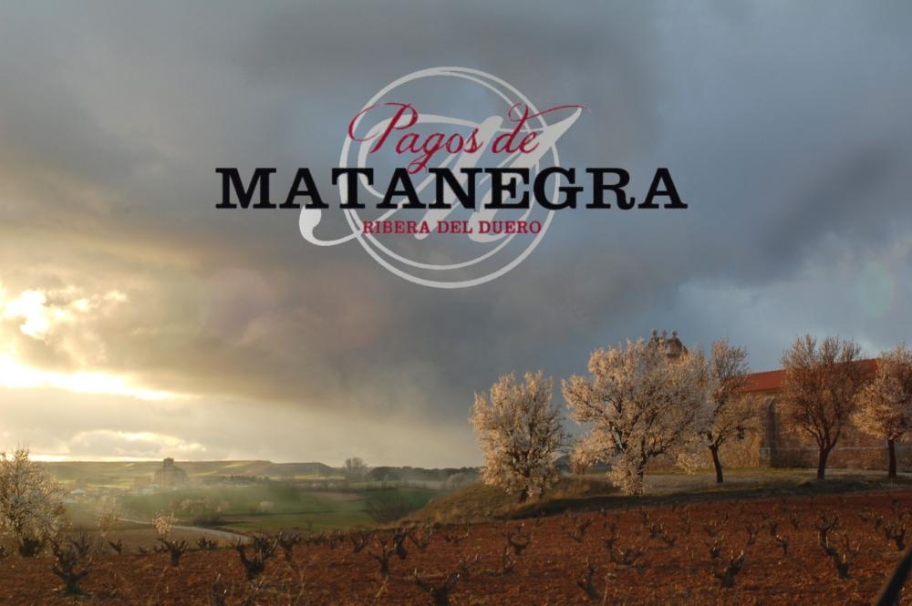 Bodega Pagos Matanegra Signature Tempranillo