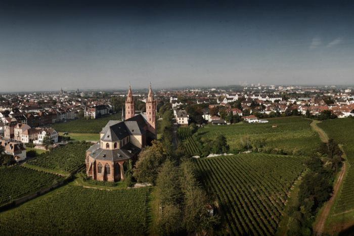 liebfrauenstift winery, germany
