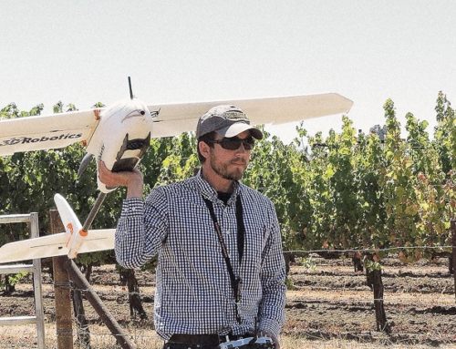 University of Adelaide Develops New Techniques for Monitoring Grape and Vine Performance