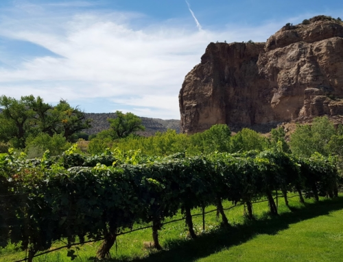 Considering Colorado Wine, Sutcliffe is a Standout