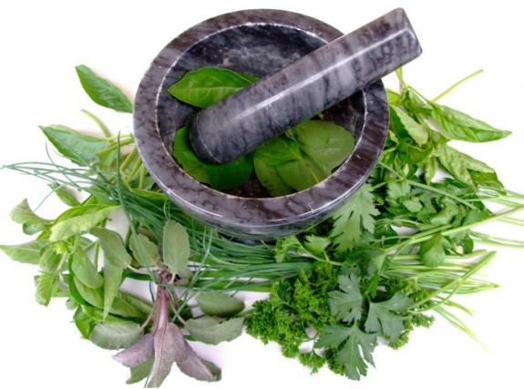 rivetto medicinal herbs jpg (2)