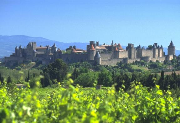 Terroirs et Millésimes en Languedoc: A Labor of Love