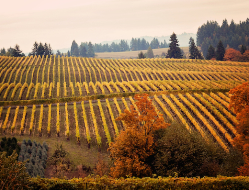 2016 Oregon Wine Country Thanksgiving Events