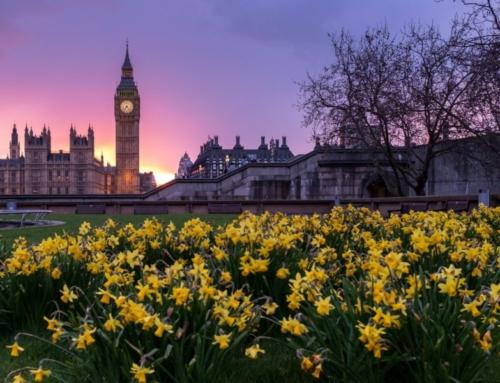 Westminster London United Kingdom