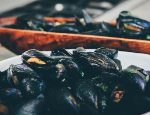 Greece Mussels