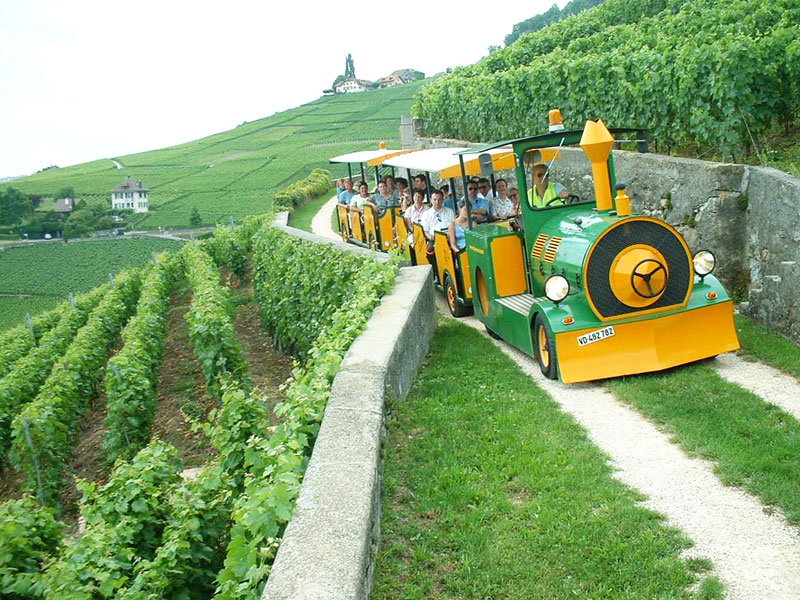 Lavaux Express Swiss Vineyards