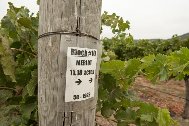 Markham Vineyards Merlot