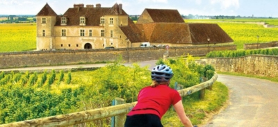 burgundy cycling
