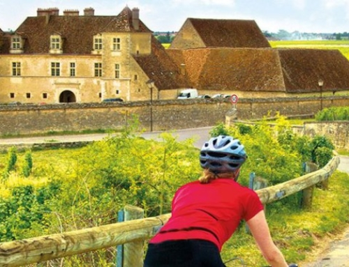 French Wine, Cycling, and Food: Why You Should Visit Burgundy