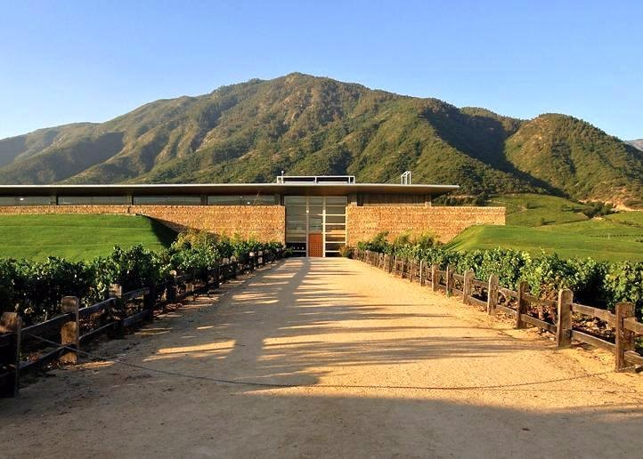 Montes Winery in Chile