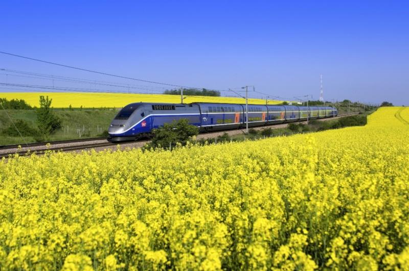 Train France Mustard Fields