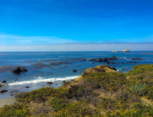 The Perfect One Day Trip: Ragged Point to Cayucos
