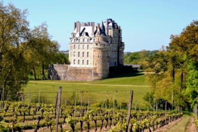 visite-vignoble-brissac-aubance-chateau