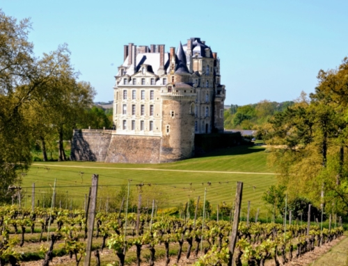 Trains, Planes, and the Wines of Loire: Another Year, Another Castle