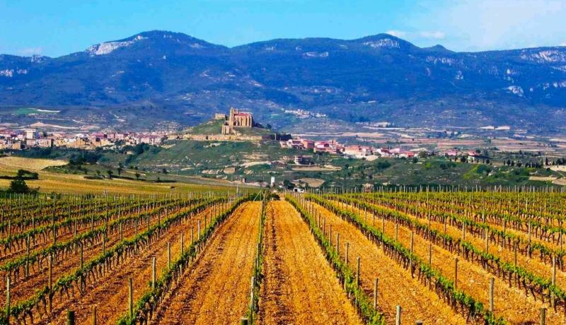 Rioja Wine Region