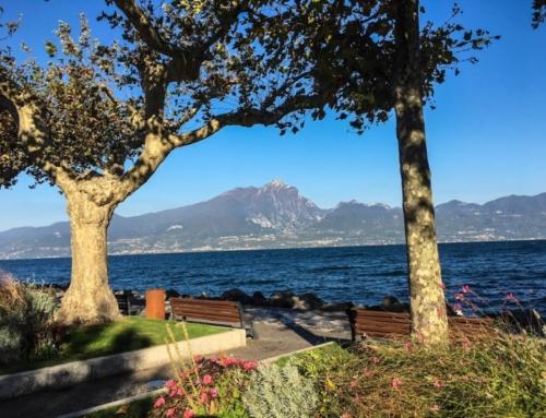 Discovering Chiaretto: Italian Dry Rosés Off The Beaten Path